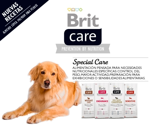 special-care